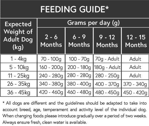 puppy dog feeding guide
