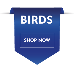 Buy Bird Products